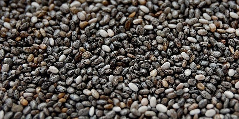 Hurtowa nasion i pestek Chia