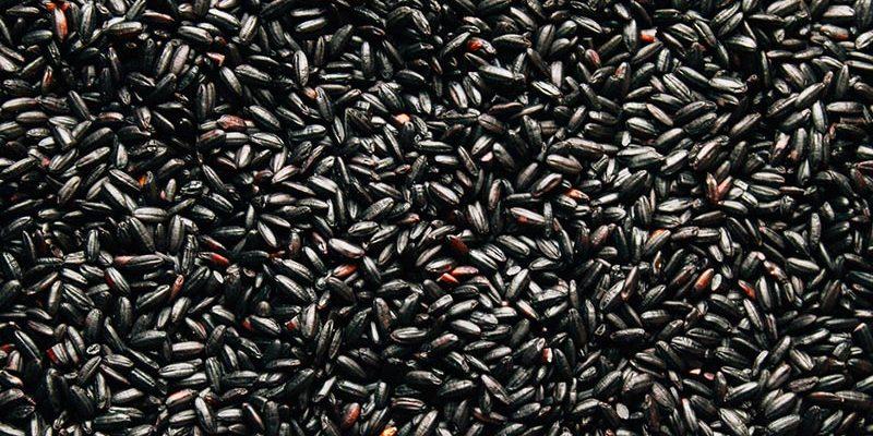 Hurtowa ryżów i makaronów, czarny ryż